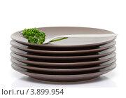 Стопка коричневых тарелок с вилкой и петрушкой. Стоковое фото, фотограф Olha Ukhal / Фотобанк Лори