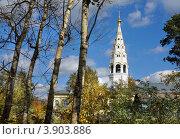 Купить «Никольская церковь в Приволжске, Ивановская область, осенний пейзаж», фото № 3903886, снято 21 сентября 2012 г. (c) ElenArt / Фотобанк Лори