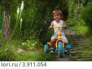 Купить «Счастливый мальчик катается на трехколесном велосипеде», фото № 3911054, снято 10 августа 2012 г. (c) Сергей Новиков / Фотобанк Лори