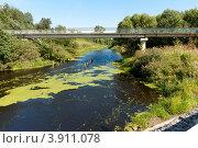 Купить «Пешеходный мост через реку Тогоду. Город Любань», фото № 3911078, снято 14 августа 2012 г. (c) Андрей Небукин / Фотобанк Лори