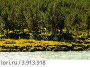 Речка в Норвегии (2008 год). Стоковое фото, фотограф Estet / Фотобанк Лори