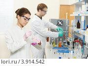 Купить «Ученые химики в лаборатории», фото № 3914542, снято 27 сентября 2012 г. (c) Дмитрий Калиновский / Фотобанк Лори