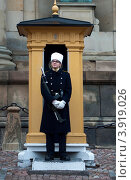 Караульный, Стокгольм, Швеция (2011 год). Редакционное фото, фотограф Мария Шарапова / Фотобанк Лори