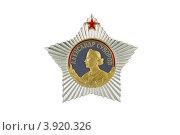Купить «Орден Суворова первой степени на белом фоне», фото № 3920326, снято 30 сентября 2012 г. (c) Nikolay Sukhorukov / Фотобанк Лори