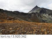 Купить «Гора Манарага с перевала Студенческий», фото № 3920342, снято 25 августа 2012 г. (c) Андрей Мелкозеров / Фотобанк Лори