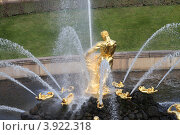 """Купить «Санкт-Петербург фонтан """"Самсон"""". Петергоф», эксклюзивное фото № 3922318, снято 26 сентября 2012 г. (c) Дмитрий Неумоин / Фотобанк Лори"""