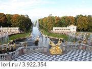 """Купить «Санкт-Петербург фонтан """"Самсон"""" и вид на финский залив. Петергоф.», эксклюзивное фото № 3922354, снято 26 сентября 2012 г. (c) Дмитрий Неумоин / Фотобанк Лори"""