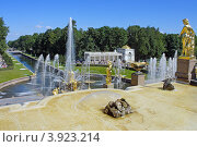 Купить «Петергоф, Большой каскад», фото № 3923214, снято 15 августа 2012 г. (c) Ольга Остроухова / Фотобанк Лори