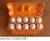 Десять куриных яиц в контейнере. Стоковое фото, фотограф Алексей Макшаков / Фотобанк Лори