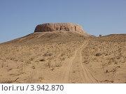 Узбекистан. Башня молчания (2011 год). Стоковое фото, фотограф Наталья Нестерова / Фотобанк Лори
