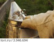 Пчеловодческий дымарь. Стоковое фото, фотограф Денис Кошель / Фотобанк Лори