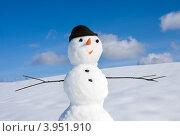 Купить «Снеговик в ясный солнечный день», фото № 3951910, снято 20 января 2012 г. (c) ElenArt / Фотобанк Лори