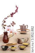 Зелёный чай и цветы. Стоковое фото, фотограф Ольга Киселева / Фотобанк Лори