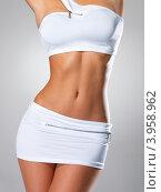 Купить «Красивое женское тело с идеальными формами, серый фон», фото № 3958962, снято 15 октября 2012 г. (c) Валуа Виталий / Фотобанк Лори