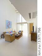 Современная гостиная с ротанговой мебелью. Стоковое фото, фотограф Дмитрий Эрслер / Фотобанк Лори