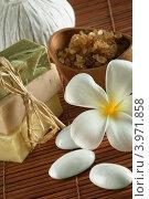Купить «Мыло ручной работы и морская соль», фото № 3971858, снято 23 февраля 2012 г. (c) Дмитрий Эрслер / Фотобанк Лори