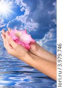 Цветок гладиолуса в женских руках на фоне голубого неба и воды. Стоковая иллюстрация, иллюстратор Наталья Спиридонова / Фотобанк Лори