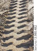 Купить «Отпечаток шин грузовика на песке с глиной», фото № 3980482, снято 12 мая 2011 г. (c) Фотограф / Фотобанк Лори