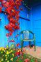 Пластиковый стул и клумба с цветами у входа в сельский дом, фото № 3985550, снято 26 сентября 2012 г. (c) Сергей Яковлев / Фотобанк Лори