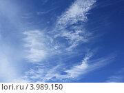Купить «Разводы облаков на синем небе», фото № 3989150, снято 11 августа 2012 г. (c) Александр Литовченко / Фотобанк Лори