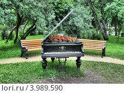Купить «Рояль-клумба в парке Горького, Москва», эксклюзивное фото № 3989590, снято 13 июня 2012 г. (c) lana1501 / Фотобанк Лори