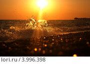 Золотой закат. Стоковое фото, фотограф Антон Юрченков / Фотобанк Лори