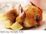 Купить «Жареная курица с хрустящей корочкой», фото № 4020170, снято 21 октября 2012 г. (c) Юлия Маливанчук / Фотобанк Лори