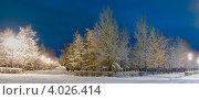 Купить «Ночные аллеи, Алое Поле, Челябинск. Панорама», фото № 4026414, снято 15 ноября 2012 г. (c) Евгений Пархаев / Фотобанк Лори