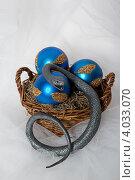 Купить «Серая змея ёлочных игрушках», фото № 4033070, снято 19 ноября 2012 г. (c) Екатерина Панфилова / Фотобанк Лори