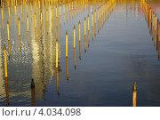 Неработающий фонтан в Волгограде. Стоковое фото, фотограф Сергей Плешаков / Фотобанк Лори