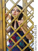 Купить «Портрет красивой брюнетки», фото № 4040534, снято 16 июля 2011 г. (c) Сергей Сухоруков / Фотобанк Лори