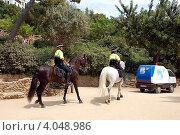 Купить «Конная полиция в парке Гуэль. Барселона, Испания», фото № 4048986, снято 3 июля 2011 г. (c) Светлана Колобова / Фотобанк Лори