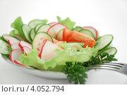 Салат вегетарианский. Стоковое фото, фотограф Ольга Полякова / Фотобанк Лори