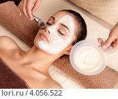 Купить «SPA салон. Женщине наносят питательную маску на лицо», фото № 4056522, снято 15 ноября 2012 г. (c) Валуа Виталий / Фотобанк Лори