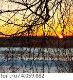 Купить «Зимний закат», фото № 4059882, снято 28 января 2012 г. (c) ElenArt / Фотобанк Лори