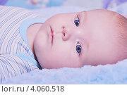 Малыш на голубом одеяле. Стоковое фото, фотограф Шишова Анна Сергеевна / Фотобанк Лори