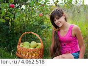Купить «Девочка подросток с корзиной яблок», фото № 4062518, снято 25 августа 2012 г. (c) Володина Ольга / Фотобанк Лори