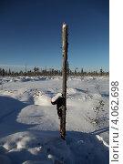 Купить «Вешка на болоте обозначенная сапогом», эксклюзивное фото № 4062698, снято 8 ноября 2012 г. (c) Валерий Акулич / Фотобанк Лори