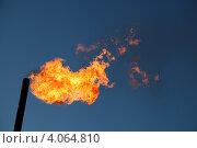 Купить «Сжигание попутного газа на месторождении нефти», эксклюзивное фото № 4064810, снято 21 сентября 2012 г. (c) Валерий Акулич / Фотобанк Лори