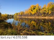 Купить «Осень», фото № 4070598, снято 21 октября 2012 г. (c) Александр Груднина / Фотобанк Лори