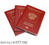 Паспорт гражданина России заграничный. Стоковое фото, фотограф Феликс Кучмакра / Фотобанк Лори