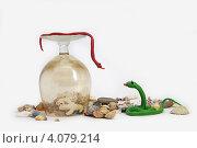 Зеленая и красная змейки. Стоковое фото, фотограф Анастасия Герасимова / Фотобанк Лори