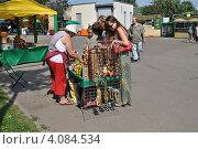 Купить «Уличная торговля сувенирами и подарками ручной работы, Коломенское, Москва», эксклюзивное фото № 4084534, снято 29 июля 2012 г. (c) lana1501 / Фотобанк Лори
