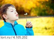Мальчик в парке с одуванчиком. Стоковое фото, фотограф Евстратенко Юлия Викторовна / Фотобанк Лори