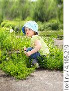 Маленькая кудрявая девочка с одуванчиком. Стоковое фото, фотограф Евстратенко Юлия Викторовна / Фотобанк Лори