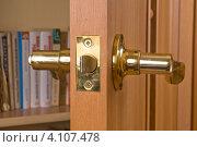 Купить «Дверная ручка», фото № 4107478, снято 27 декабря 2011 г. (c) Владимир Хаманов / Фотобанк Лори