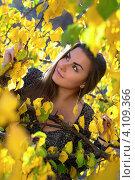 Купить «Девушка с длинными волосами гуляет в осеннем лесу», фото № 4109366, снято 15 октября 2011 г. (c) Сергей Сухоруков / Фотобанк Лори