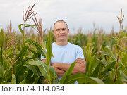 Купить «Мужчина агроном стоит посреди поля кукурузы», фото № 4114034, снято 12 сентября 2012 г. (c) Яков Филимонов / Фотобанк Лори