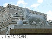 Купить «Екатеринбург. Скульптура льва у здания Театра оперы и балета.», фото № 4116698, снято 20 февраля 2019 г. (c) Анна Омельченко / Фотобанк Лори