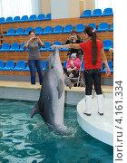 Купить «Девочка фотографируется с дельфином», фото № 4161334, снято 1 декабря 2012 г. (c) fotobelstar / Фотобанк Лори